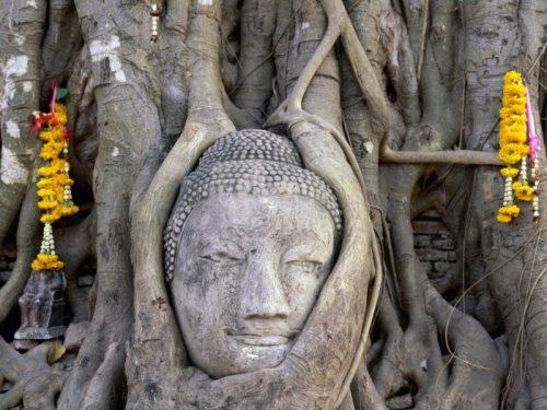 Escursione ad Ayutthaya
