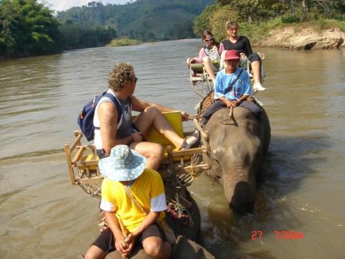 giro sugli elefanti